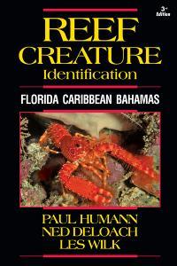 Reef Creature ID